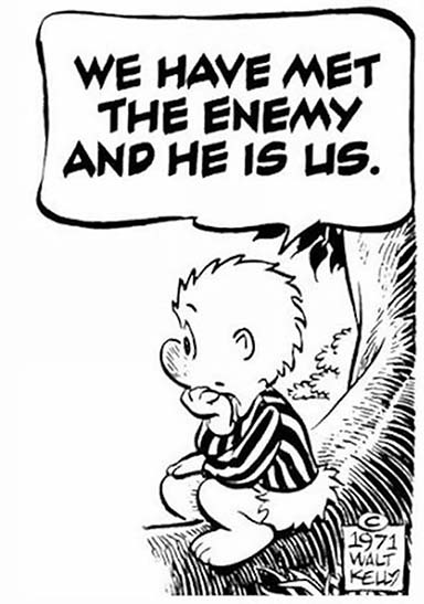 The Enemy is Us